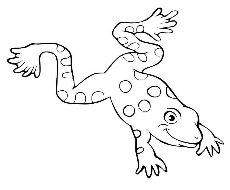 frog coloring pages - photo#31