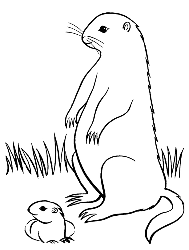Blueberries coloring pages for Blueberries for sal coloring page