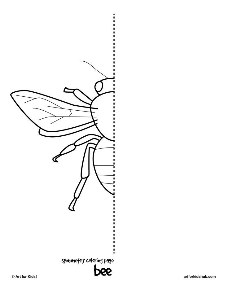 10 insect symmetry pages | Art School