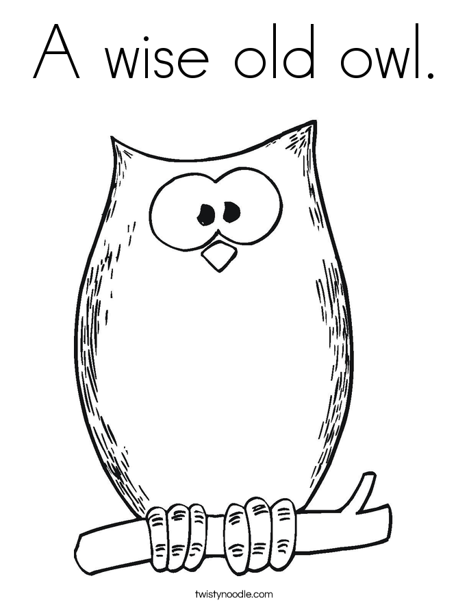 Owl Coloring Templates