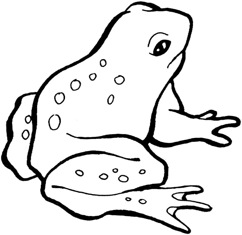 frog prince coloring page az coloring pages