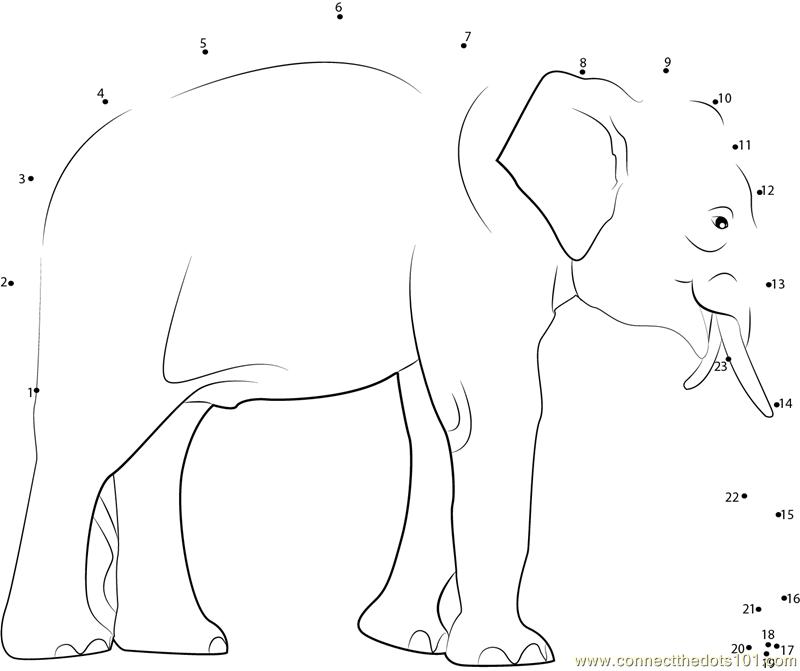 Cartoons With Elephants