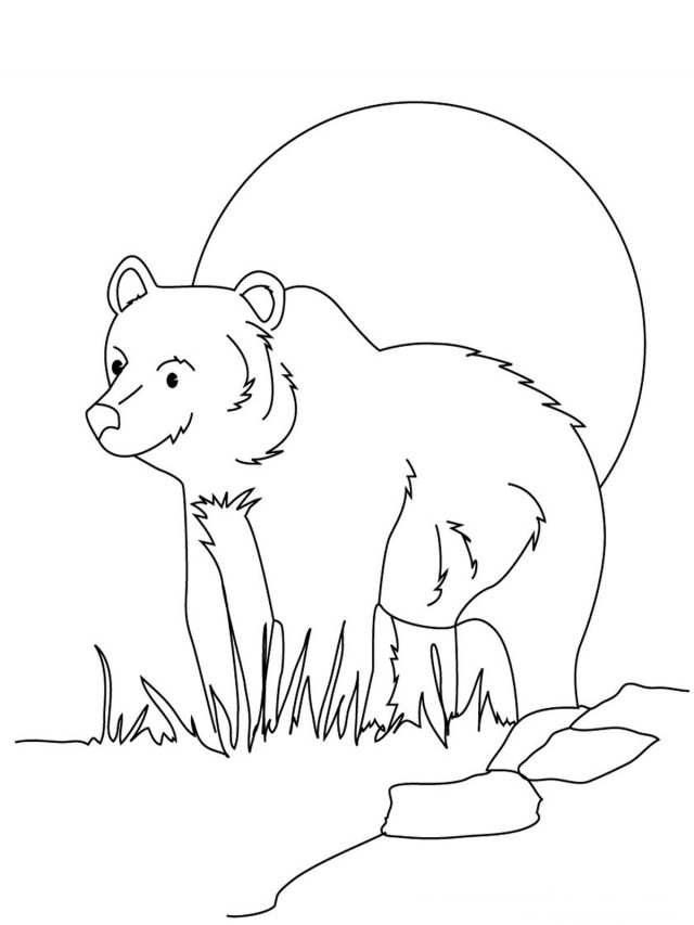black bear coloring pages printable - photo#22