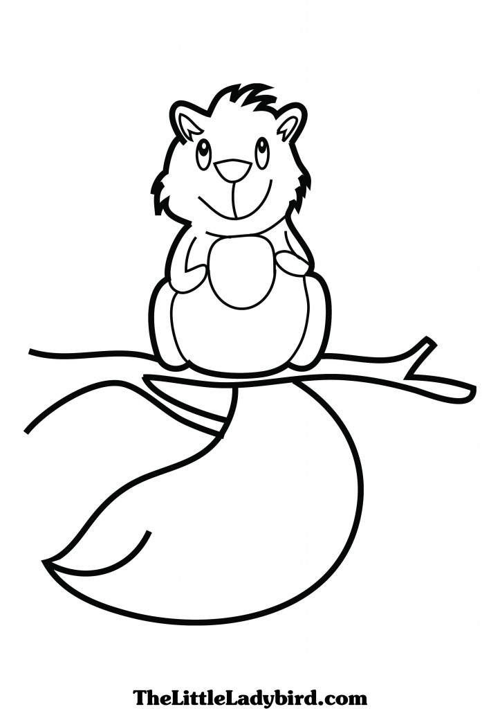 A squirrel is brown coloring pages for Scaredy squirrel coloring pages