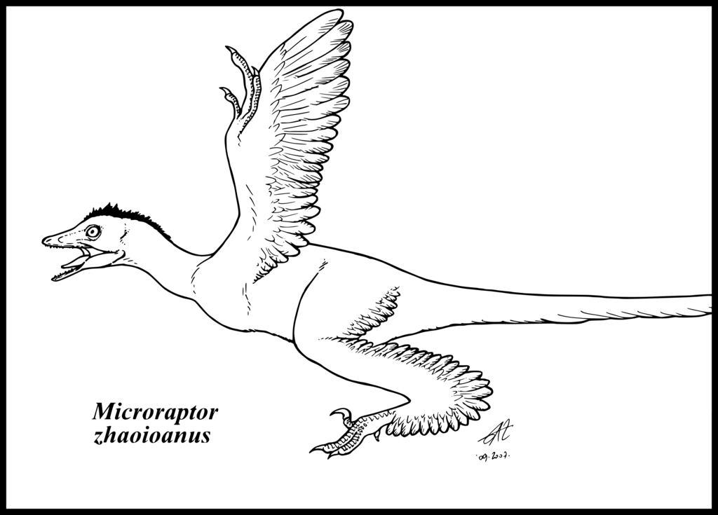 dinosaurus utah raptor coloring pages - photo#22