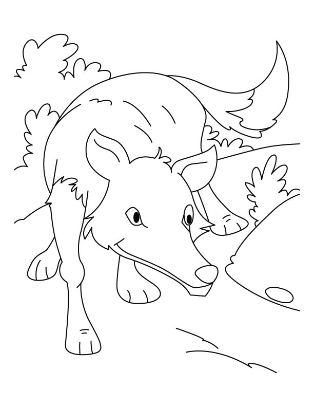 free wolf pup coloring pages - photo#16