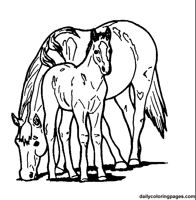 Paint Horse Coloring Pages 174 | Free Printable Coloring Pages