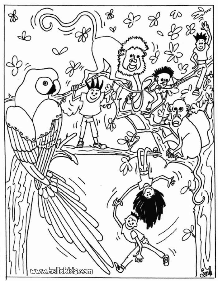 coloring pages animals animal 4 child 17 best ideas about animal