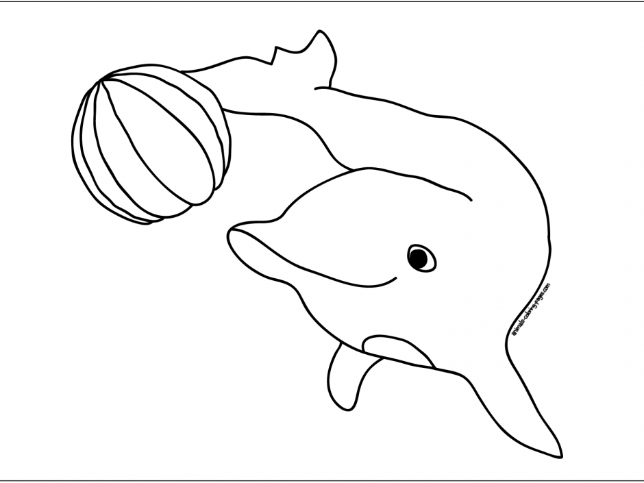 Dolphins Coloring Pages 34271 Label Baby Dolphins Coloring Pages