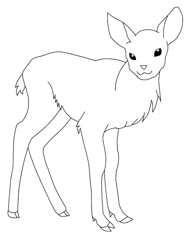 Browning Buck And Doe Coloring Pages Coloring Pages