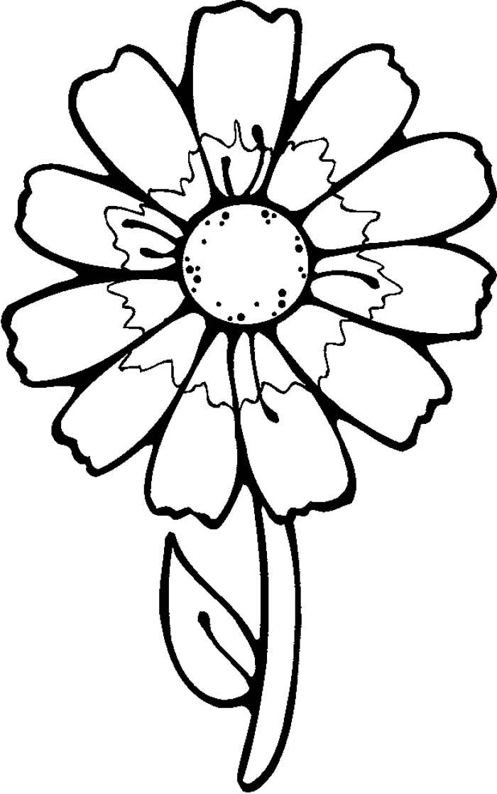 Images Of Flowers To Color | Free Reference Images - Coloring Home