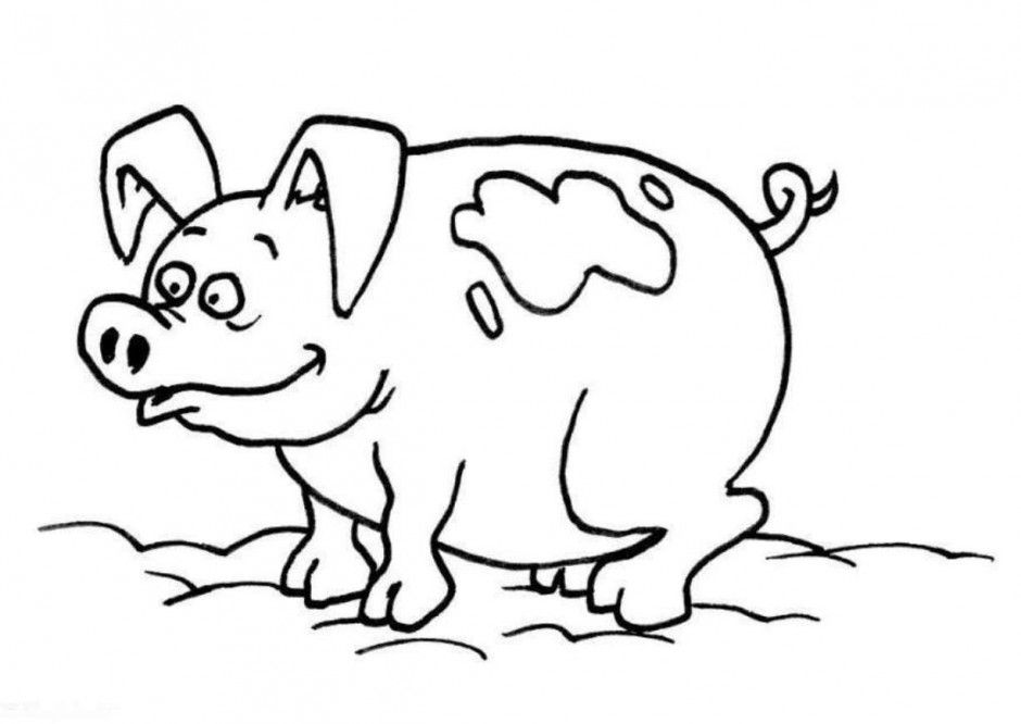 coloring pages baby pigs - photo#25