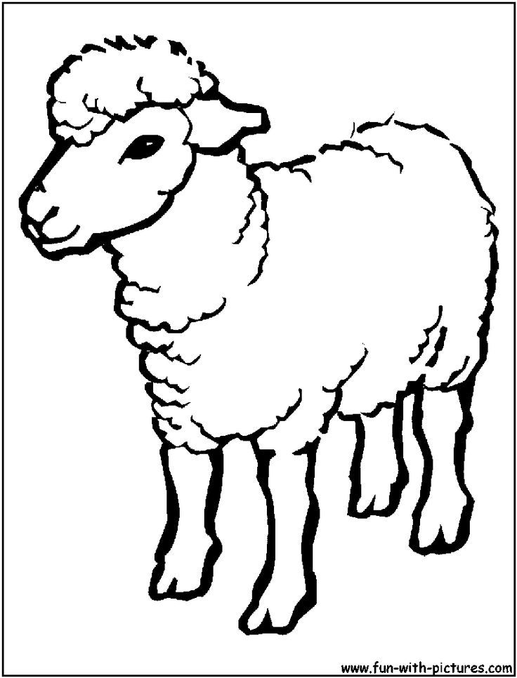 Sheep outline coloring page coloring home for Coloring page sheep