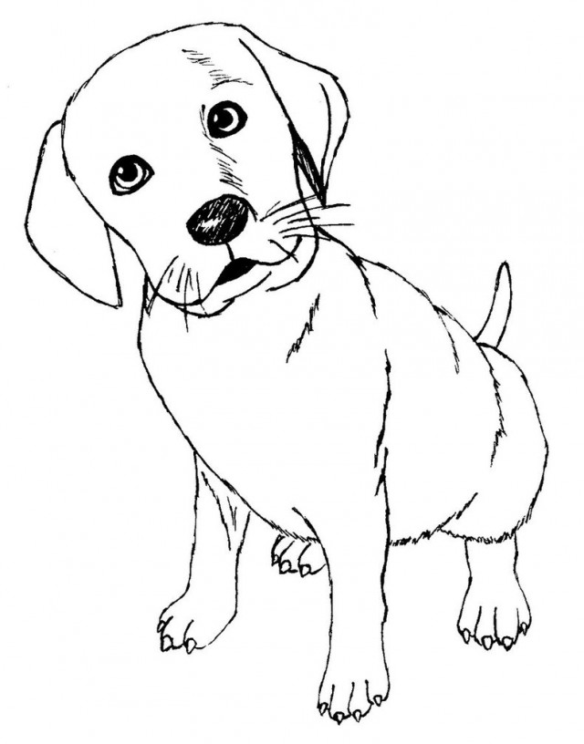 dalmation coloring book pages - photo#9