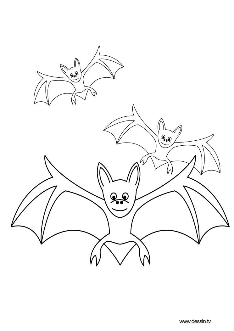 Bat Drawings For Kids