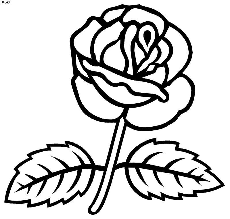 rose coloring pages games - photo#25
