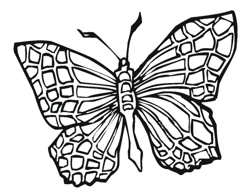 Butterfly Coloring Pages : Butterfly Tattoo Coloring Page Kids