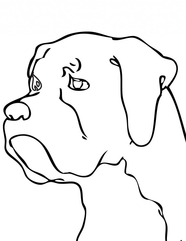 printable boxer dog coloring pages boxer dog coloring pages az coloring pages