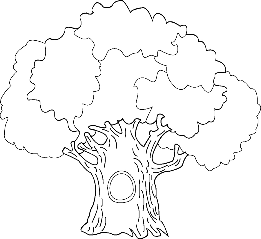 Big Tree Coloring Pages Big Tree Coloring Page