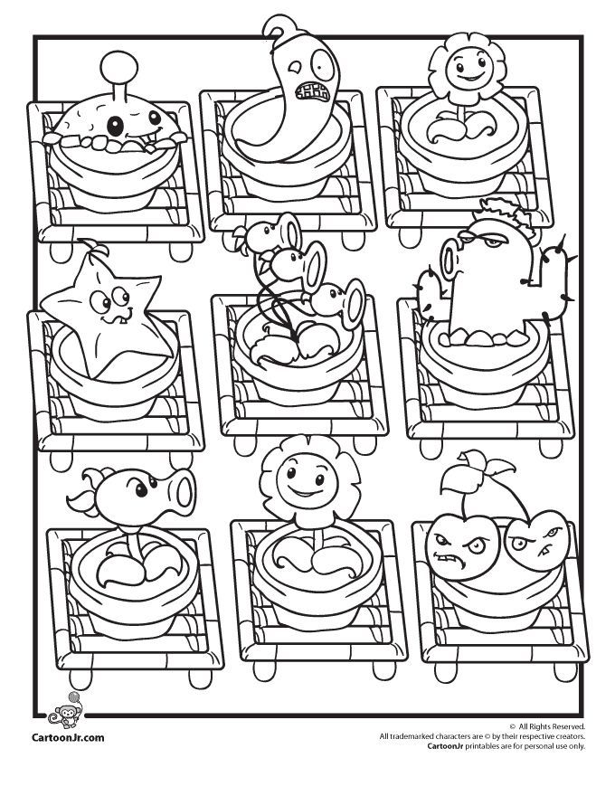 Animal And Plant Cell Coloring Pages 170