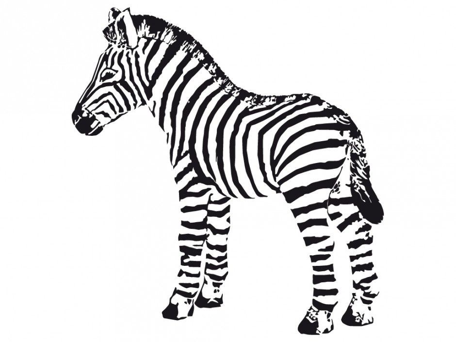 Cute zebra coloring pages coloring home for Coloring pages of zebra stripes