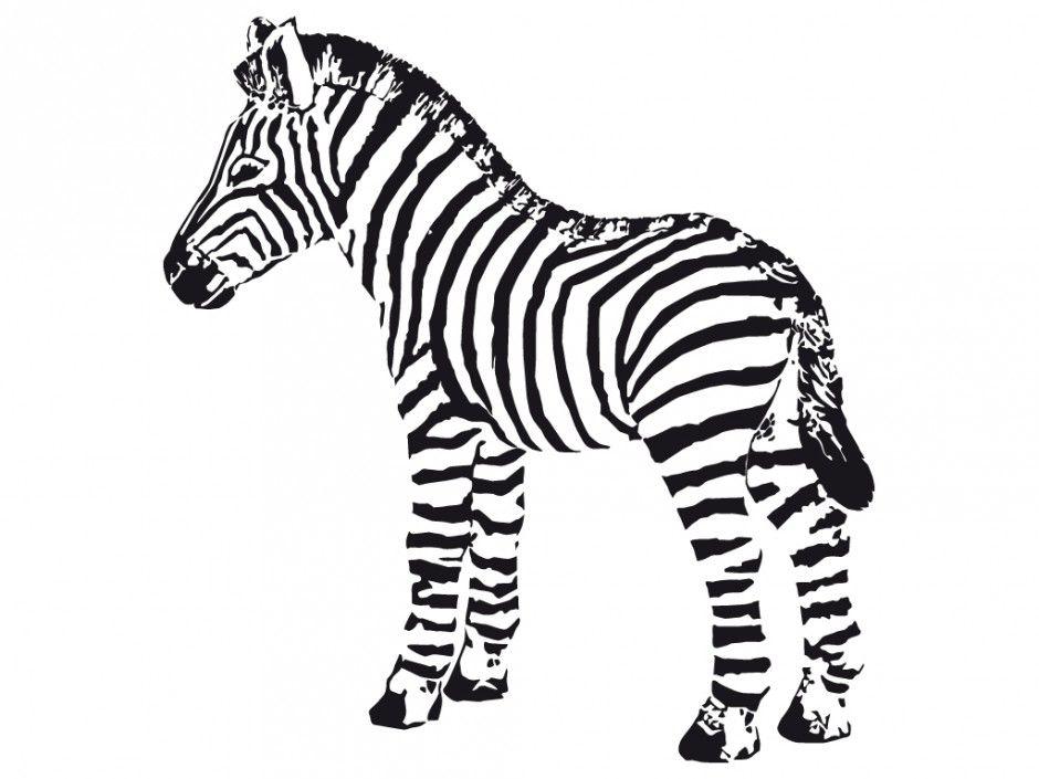 Cute zebra coloring pages coloring home - Coloriage zebre a imprimer ...