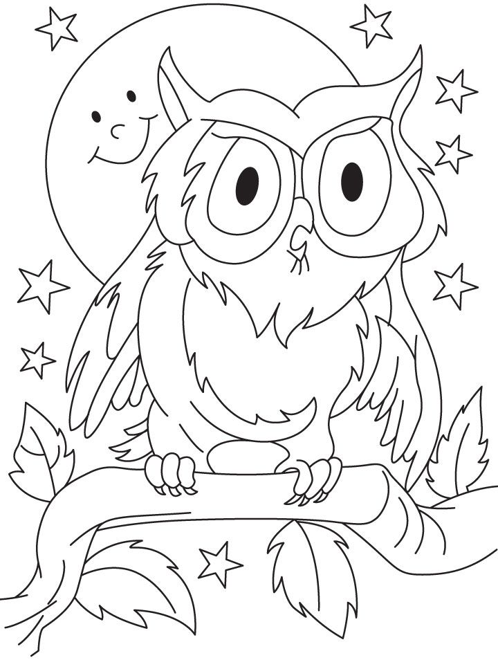 Owl Outline Drawing Coloring