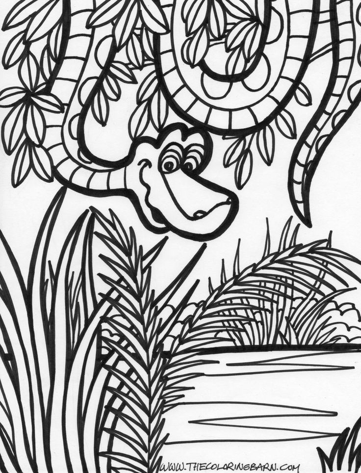 Jungle scene coloring pages coloring home for Jungle coloring pages free