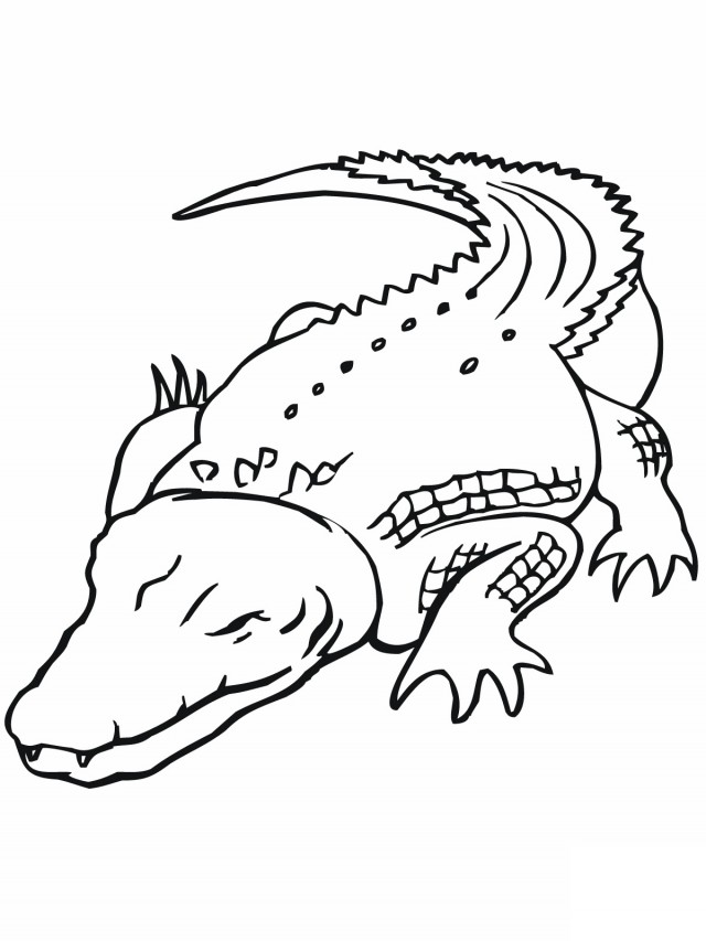 dklt coloring pages downloads - photo#8