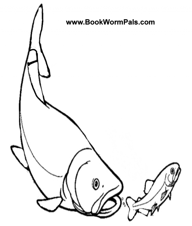 Bass Fish Coloring Pages Clipart Panda - Free Clipart Images - Coloring  Home