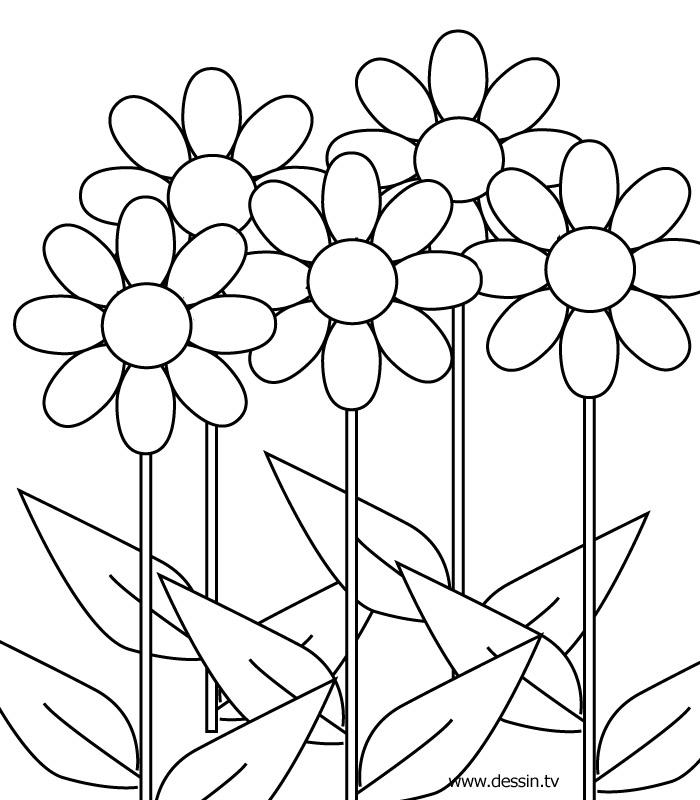 Flower Pot Coloring Pages Az Coloring Pages Flower Pot Coloring Page Printable