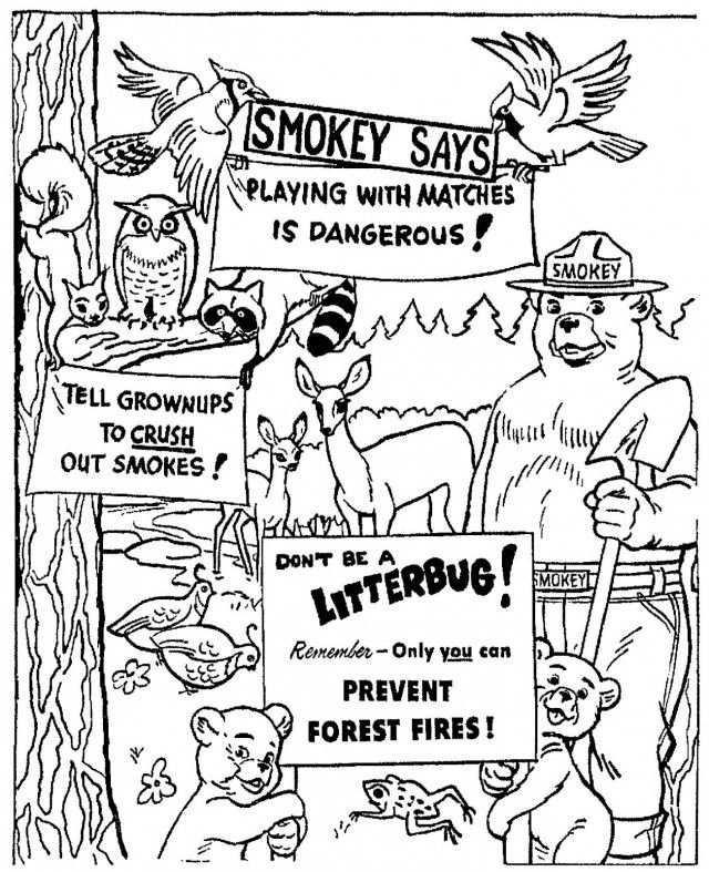 smokey the bear coloring pages - photo#8