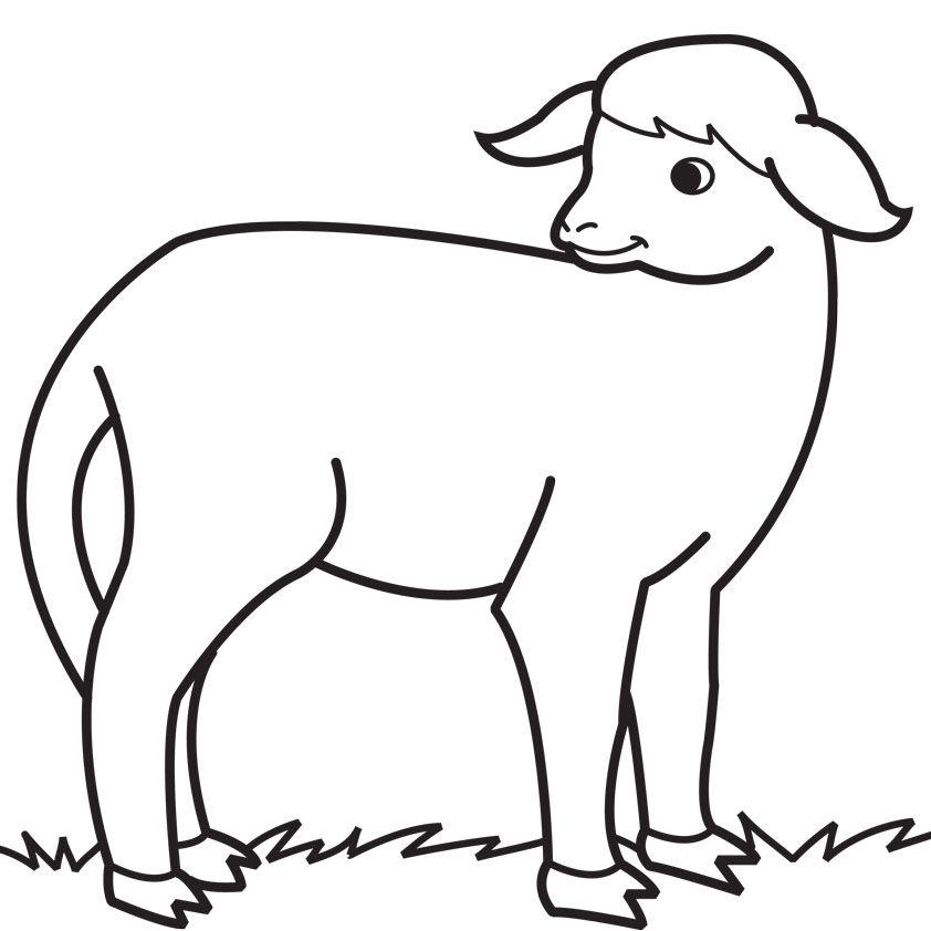 Mary Had a Little Lamb Nursery Rhyme  Crafts  Preschool