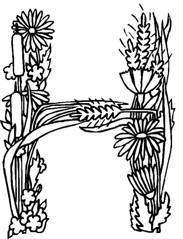 flower alphabet coloring pages - photo#12
