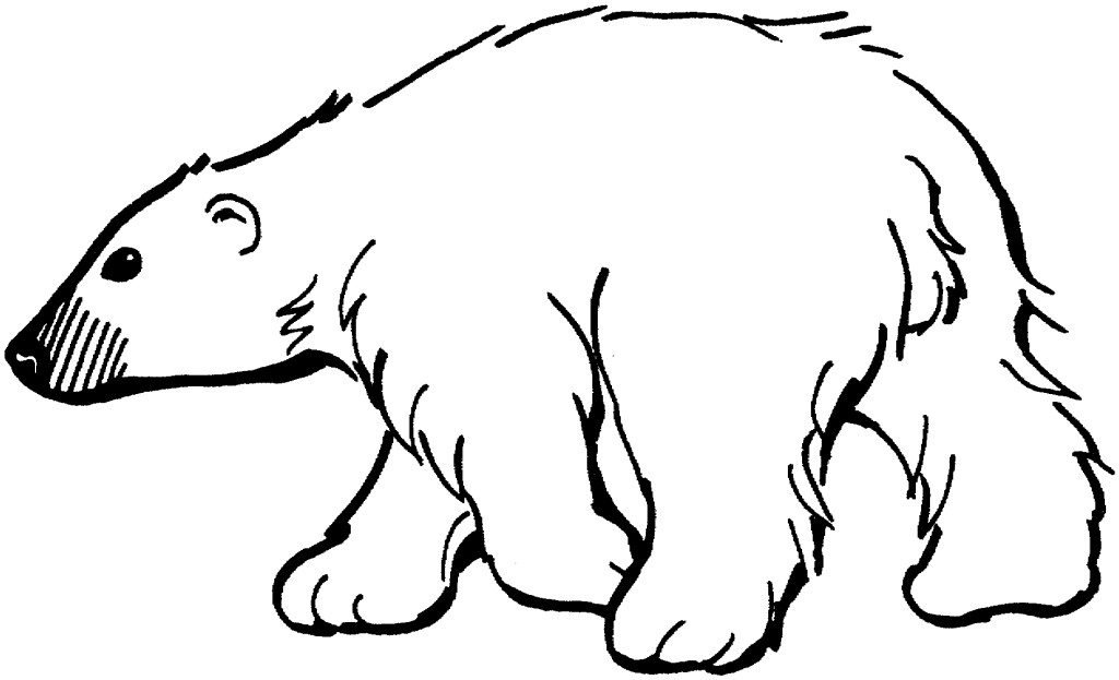 Free Koala Outline Coloring Pages