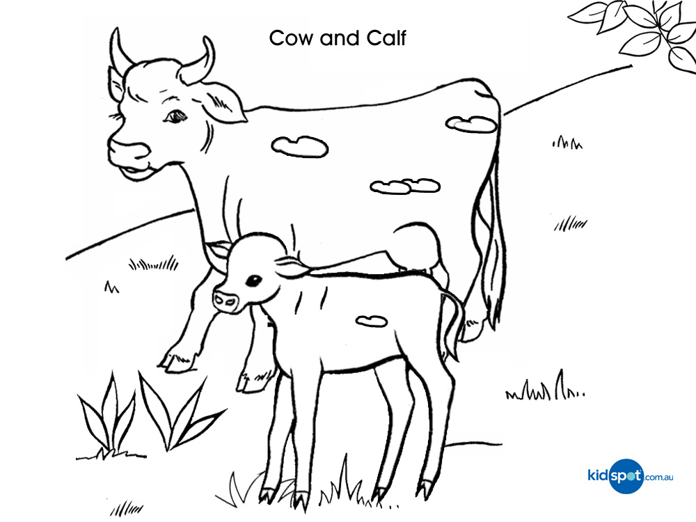 Cow Coloring Pages For Kids