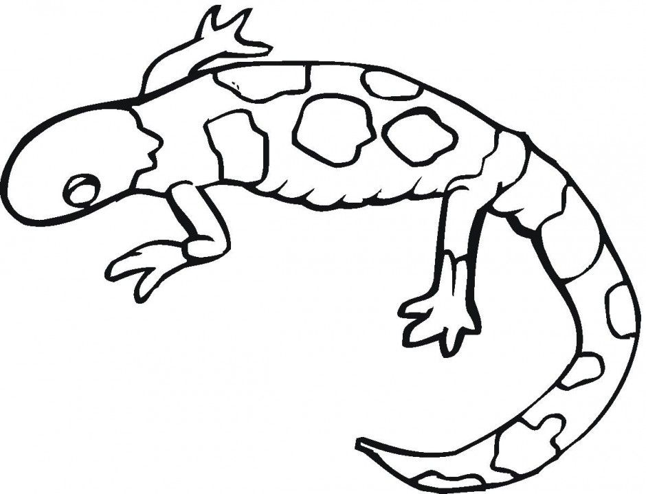 Free Leopard Gecko Coloring Pages Printable Coloring Sheet 224520