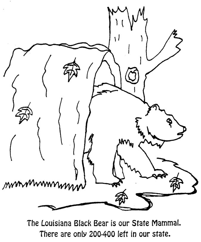 Louisiana Black Bear Coloring Page
