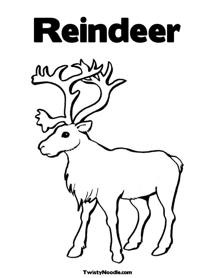 Reindeer Pictures To Color - Coloring Home