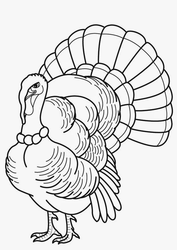 wild turkey coloring pages coloring home Realistic Turkey Coloring Pages  Wild Turkey Coloring Pages Printable