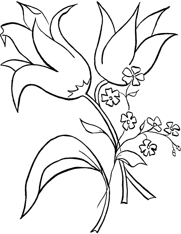 printable hawaiian flowers coloring pages - photo#17
