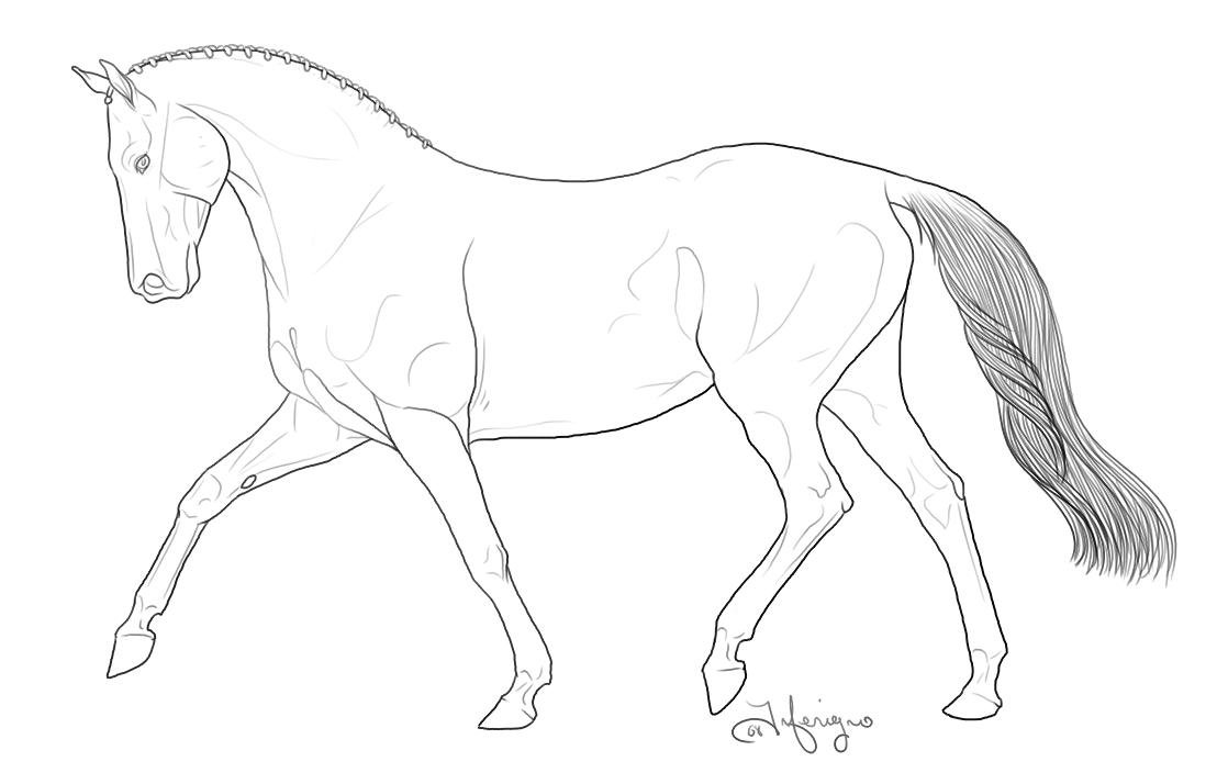 breyer horse coloring pages printable - photo#5