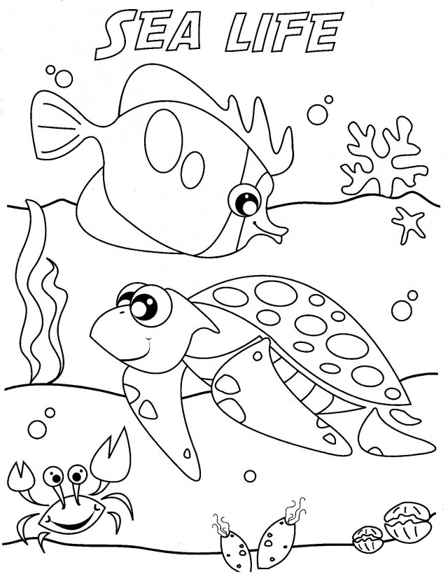 marine life coloring pages - photo#9