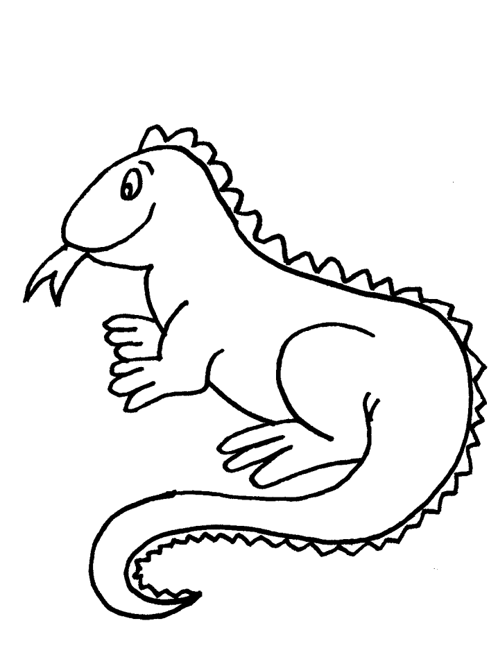 iguana coloring page   coloring home