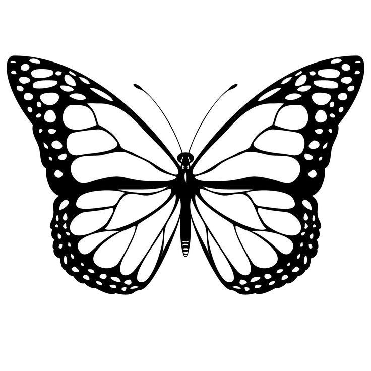 Printable Butterfly Template - Coloring Home