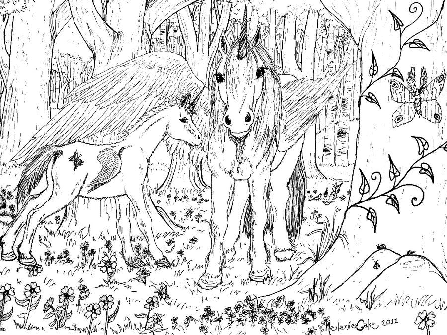 Unicorn Coloring Pages For Adults - Coloring Home