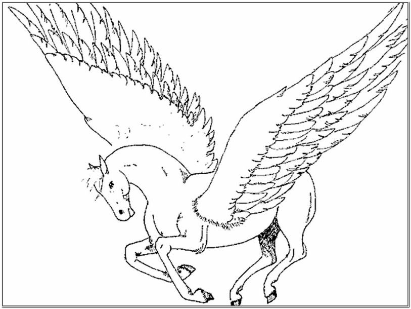 Pegasus pages for adults coloring pages for Pegasus coloring pages