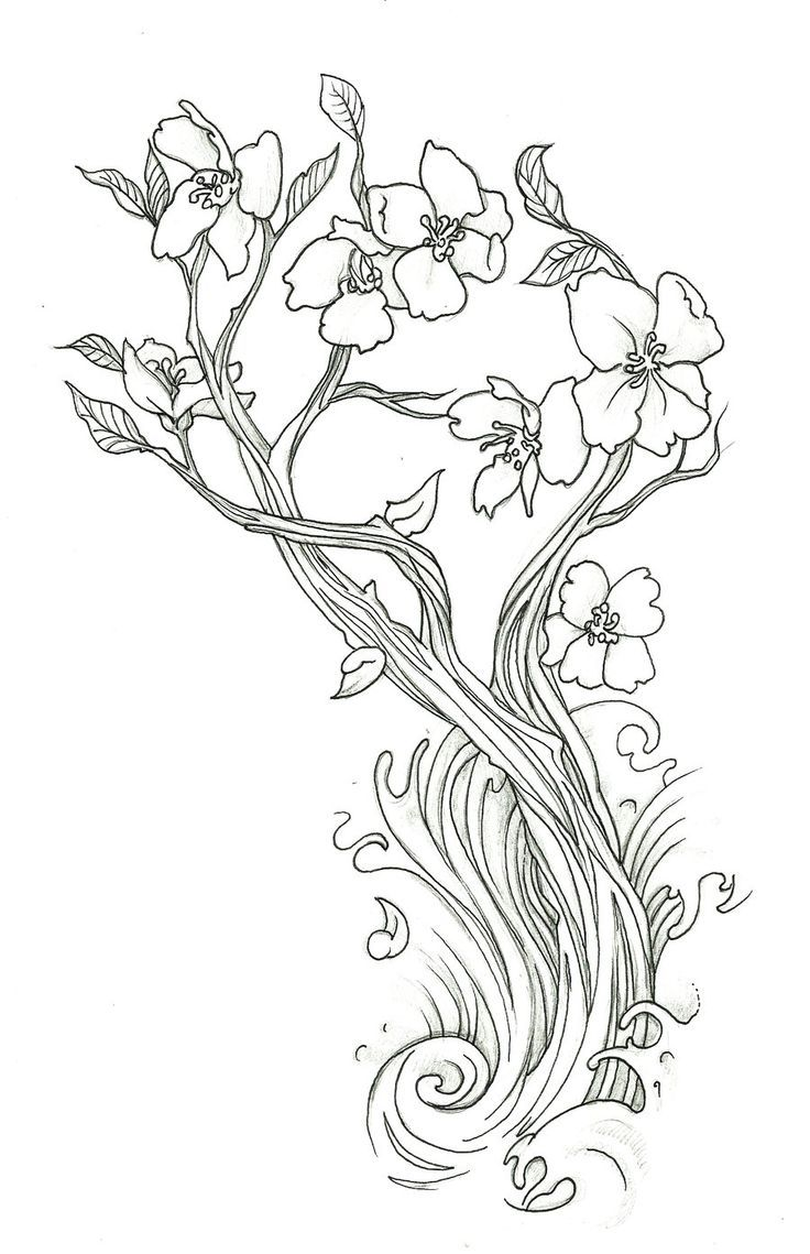 Cherry blossom coloring page coloring home for Cherry blossom coloring pages