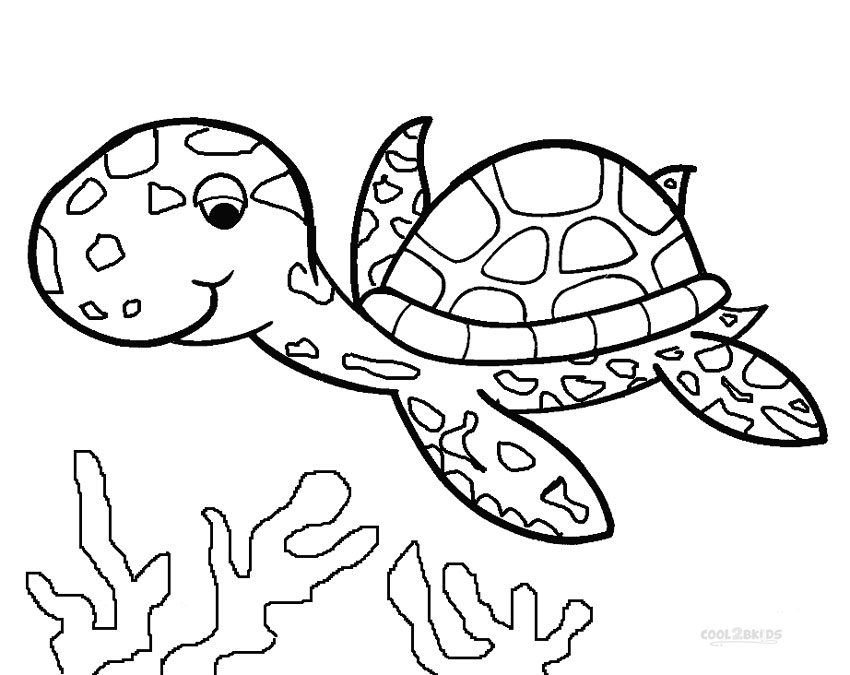 continental drift coloring pages - photo#21