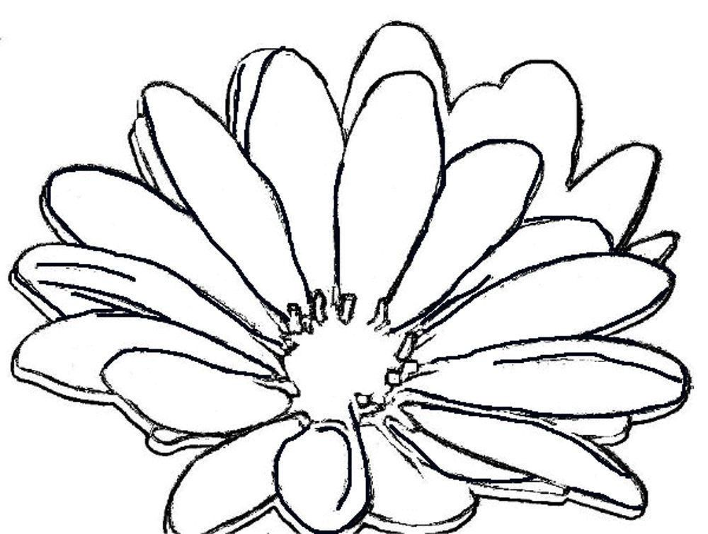 cool flowers coloring pages - photo #9